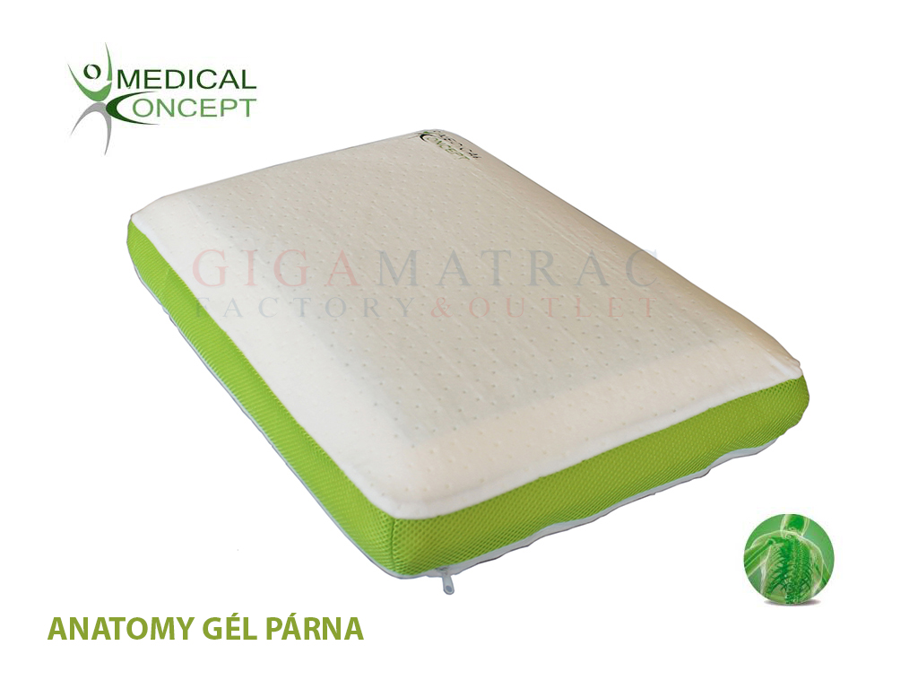 Medical Concept Anatomy Gel párna - GigaMatrac Factory Outlet ... bab03188a1